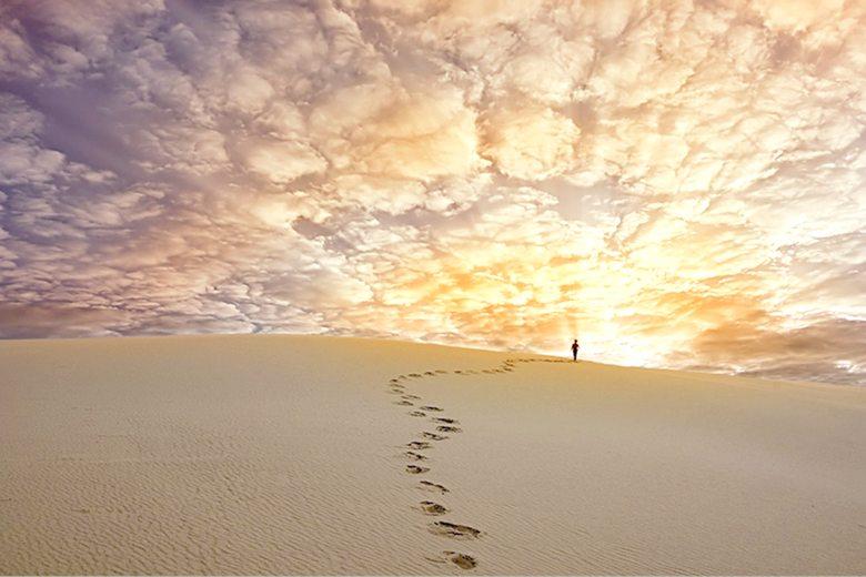 Проект Изначалие, Долг и Служение как Врата Вечности, Вечность дарит всё